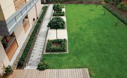 Pielęgnacja trawnika po zimie. Jak dbać o trawę w ogrodzie?