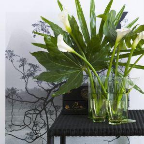 Egzotyczna tapeta plus roślina